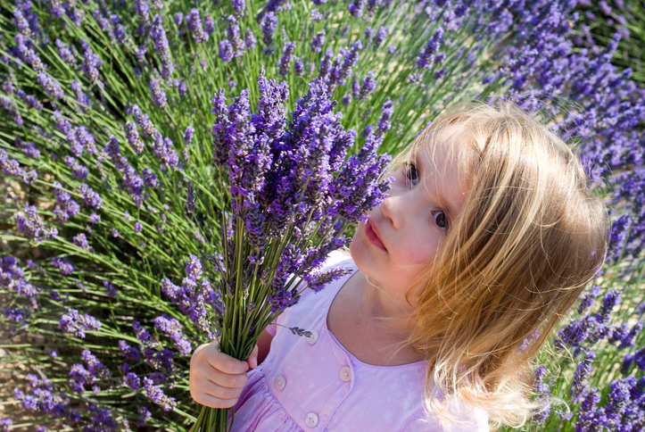 French Baby Names: Les fleurs