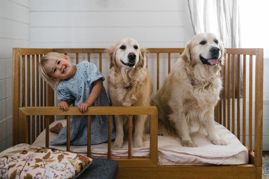 Top Dog Names 2020 Announced!